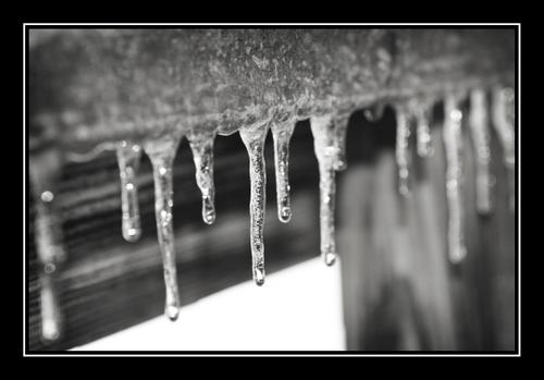 Ice_bw