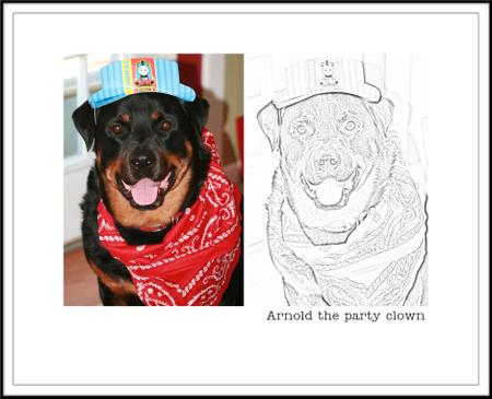 Arnold_coloring_copy_copy
